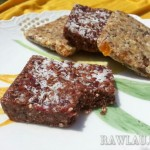 Raw Nut and Fruit Squares