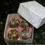 Raw Chocolate Truffles